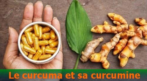 Le curcuma et sa curcumine