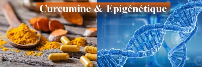 curcumine & epigenetique
